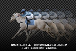 Horse Racing White and Jockey