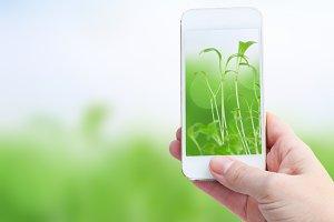 holding smart phone against spring