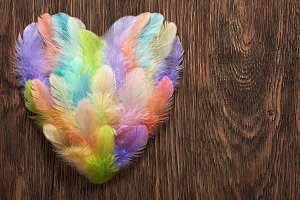 Love, Valentines Day. Heart colorful feathers,wood