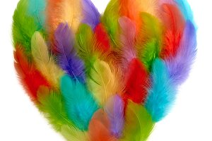 Love, Valentines Day. Heart of colorful feathers