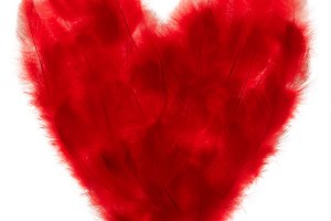 Love, Valentines Day. Heart made of red feathers