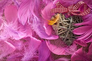 Love, Valentines Day. Heart in feathers on wood