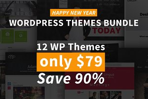 Happy New Year Bundle - 12 WP Themes