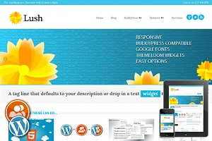Lush - Responsive WordPress Theme