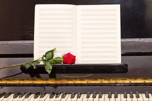 empty notes paper with red rose
