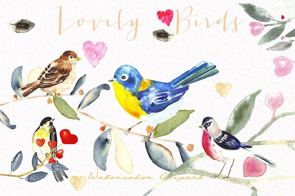 Valentines birds.watercolor clipart - Illustrations