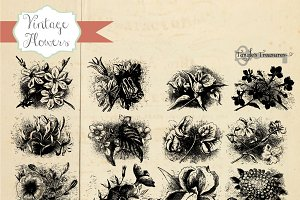 Vintage Flower Engravings