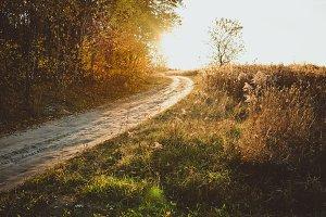 Path near Autumn Forest at Sunset