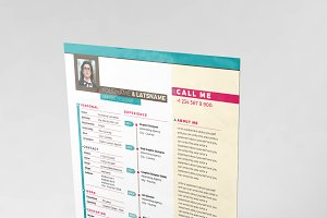 Professional Swiss Resume CV 3 Color