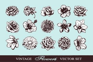 Hand-drawn Vector Flowers