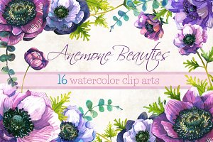 Anemone flowers watercolor clipart