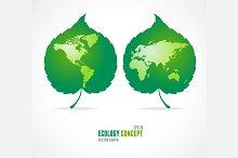 Green Leaves Like Globe and Map