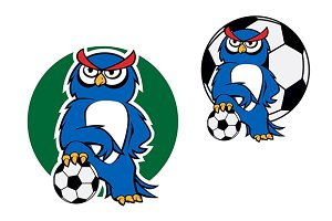 Cartoon owl character with football