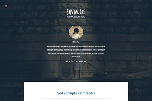 Sinulle | Fullscreen Wordpress Theme