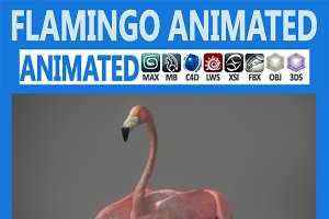 Animated Flamingo