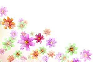 Floral Border Wallpaper