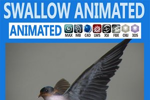 Animated Swallow