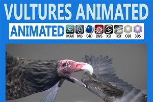 Animated Vultures
