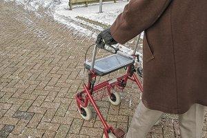 Senior behind wheeled walker