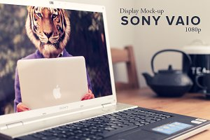 Sony Vaio HD Display Mockup
