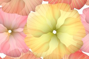 Seamless Primula Flowers Pattern