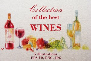 Collection of the best Wines