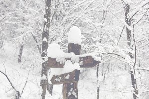 Wooden sign post in snow