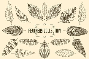 Set of ethnic feathers.