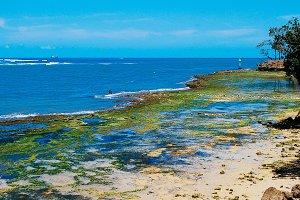 Mombasa coast, Kenya
