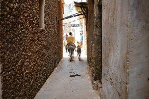 Narrow african street in Lamu