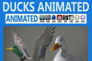 Animated Ducks