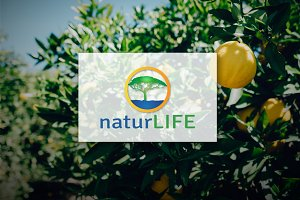 [68% off] NaturLife - Logo Design