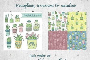 Houseplants & Succulents Set