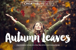 Autumn Falling Leaves Overlays