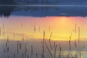 Sunrise in Karelian forest, Russia