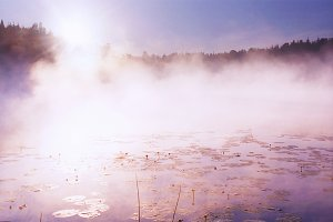 Morning on the forest lake, Karelia
