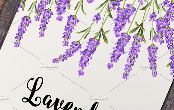 Lavender elegant card collection. in Wedding Templates - product preview 1