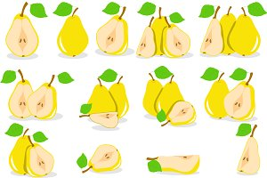 Yellow pears vector illustration