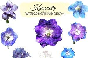 Watercolor Delphinium Collection