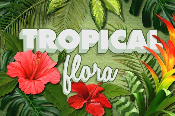 Tropical Flora, Vector & Raster Pack