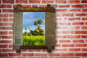 woonden window on brick wall with rice field view.jpg