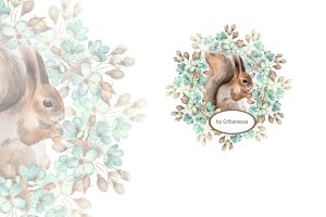 Squirrel and flowers. Watercolor