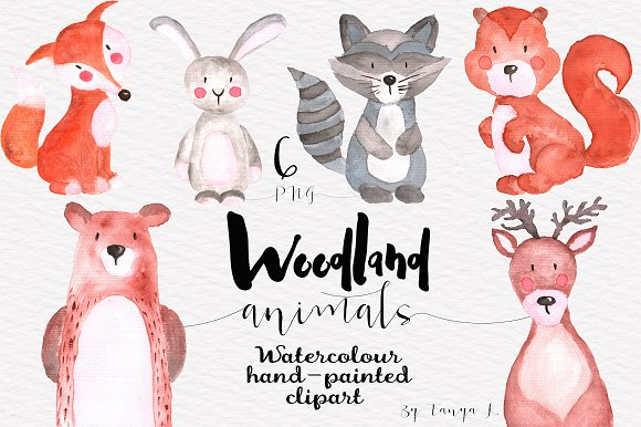 Woodland animals Watercolor Clipart in Illustrations