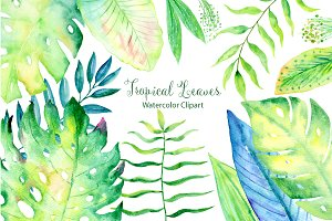 Watercolor Large Tropical Leaf