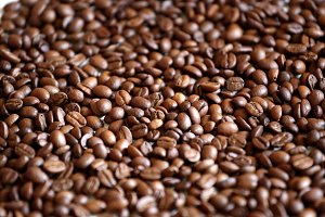 Many coffee beans close-up
