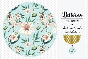 Botanical garden pattern - Almond