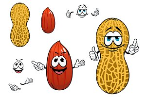 Funny kernel and pod of peanut chara