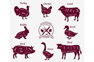 Schematic Vew of Animals for Butcher