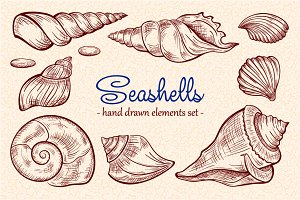 Seashells design elements set