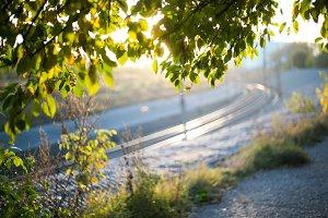 Sunshine railway nature